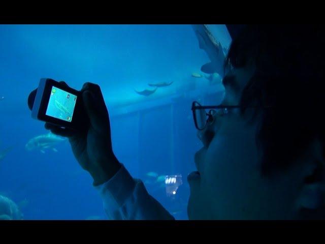 アマチュアカメラマンの米田祐二さんを追ったドキュメンタリー!映画『ぼくは写真で世界とつながる ~米田祐二 22歳~』予告編