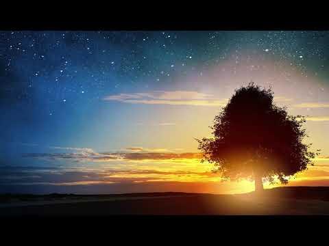 Beautiful Relaxing peaceful instrumental music