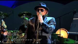 Watch Van Morrison The Way Young Lovers Do video