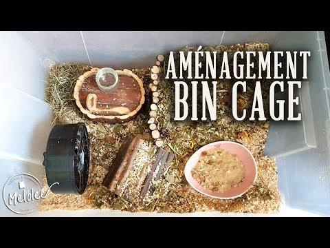 amenagement-d'une-bin-cage-pour-hamster-nain