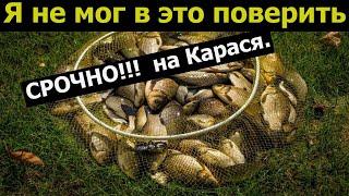 СРОЧНО НОВЫЙ УБИЙЦА КАРАСЯ УСПЕЙ СДЕЛАТЬ Рыболовная насадка