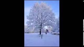 Lotta Engberg - Hej mitt vinterland