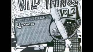 The Chicks - Rebel Kind (60's New Zealand Garage Punk)