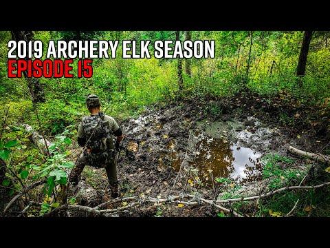 One Last Push - Washington Elk Hunt (and Rifle Deer Prep)   2019 Hunting Season EP.15