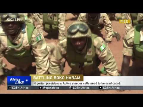 Nigerian army has 8,700 soldiers tackling Boko Haram