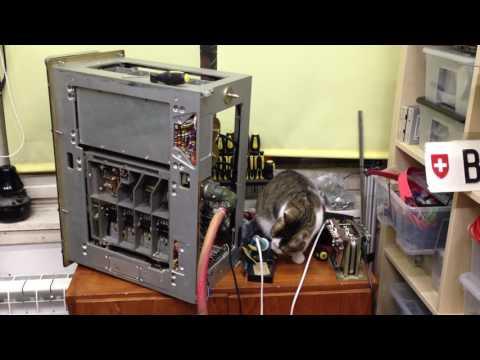 Manci cica és az ML R-1251 katonai vevő #1