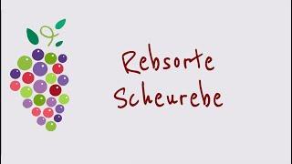 Ein Wort zum Wein - Rebsorte Scheurebe