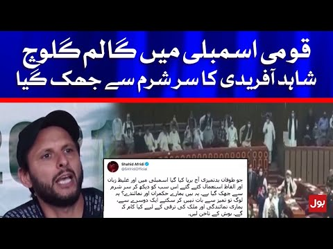 Shahid Khan Afridi's comment on the commotion in Parliament