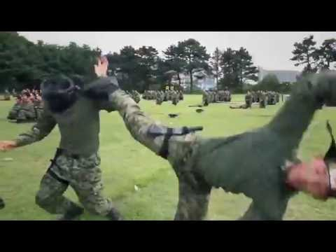South Korean Military Training Show