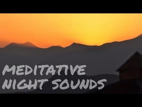 EXPERIENCES from the OSHO International Meditation Resort