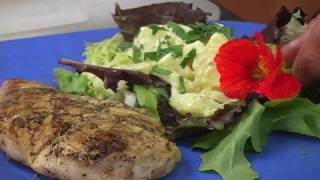 Chicken Recipe: Grilled Lemon Chicken Indoors Or Out
