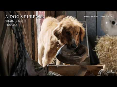 A Dog's Purpose - Trailer Music (Official Version)