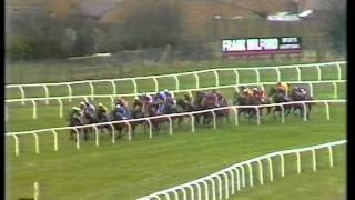 1989 Daily Express Triumph Hurdle