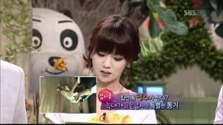 TV동물농장(524회)_01