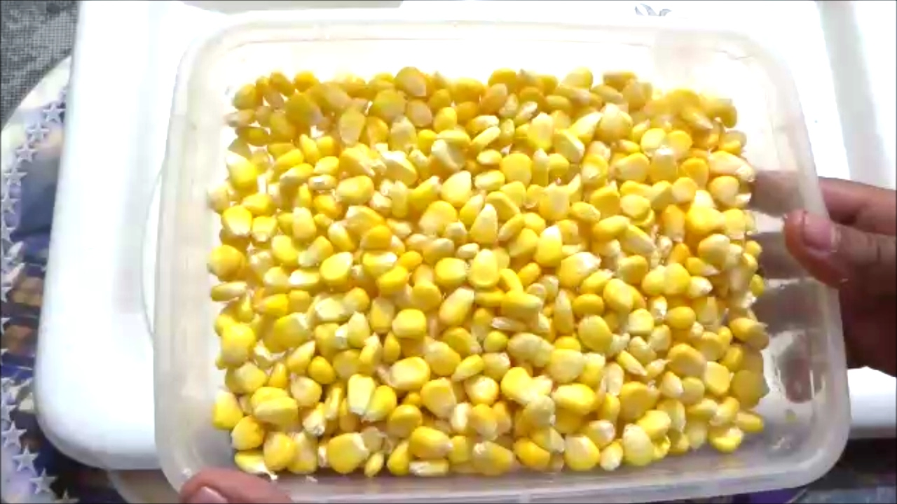 How to store corn 5