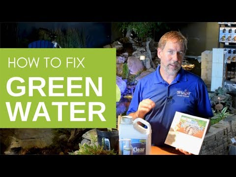 How To Get Rid Of Green Pond Water