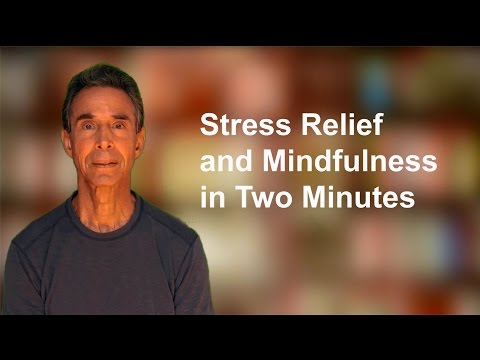 Spencer Sherman on Stress Relief and Mindfulness in Two Minutes