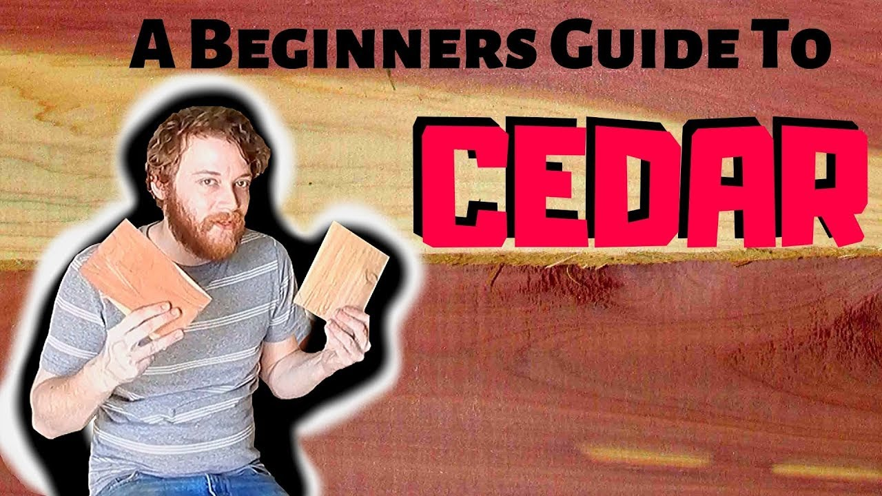 Download Beginners Guide To Wood Species - What To Expect With Cedar