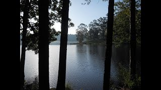 Paul B. Johnson State Park Camping Hattiesburg, Mississippi