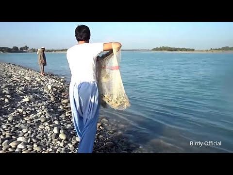 Fishing In Pakistan - Net Fishing River Indus
