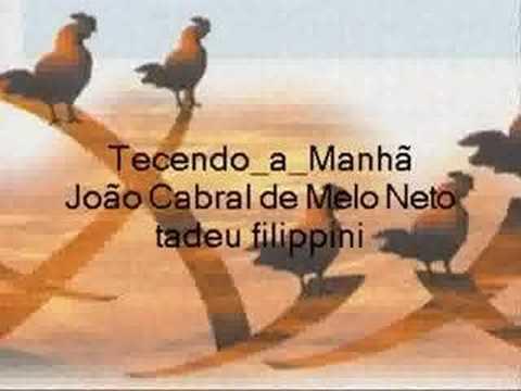 tecendo_manha