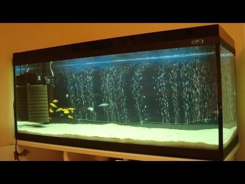 Аэрация аквариума! Аквариумный распылитель своими руками!