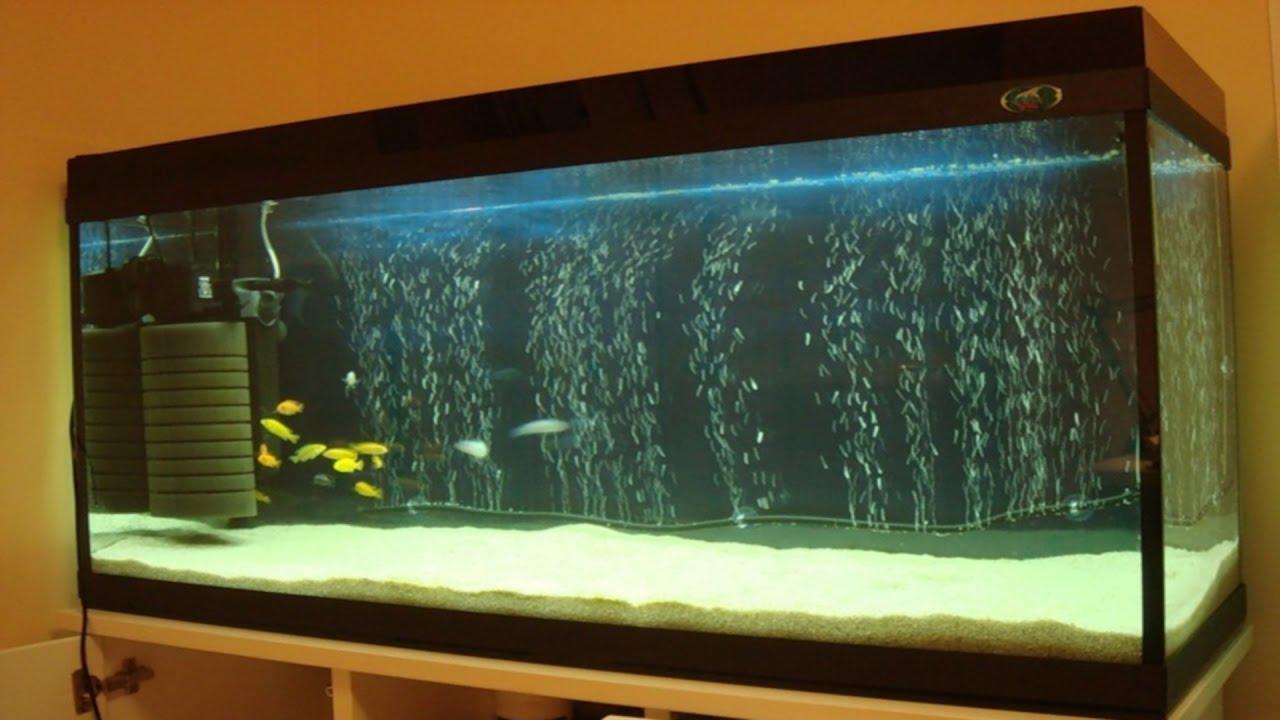 Воздушный аквариум своими руками фото 189