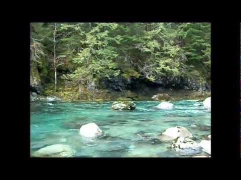 Oregon Gold Prospecting Little North fork Santiam River