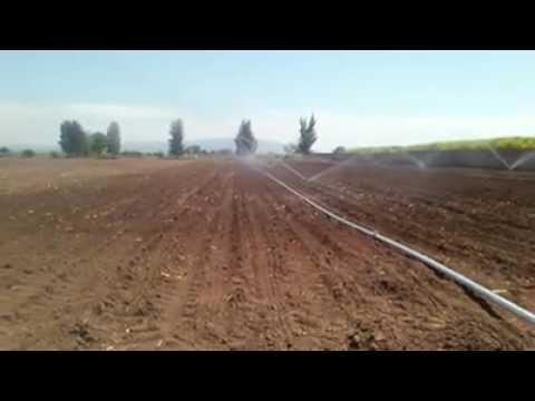 Sistema de riego con aspersores de impacto thumbnail