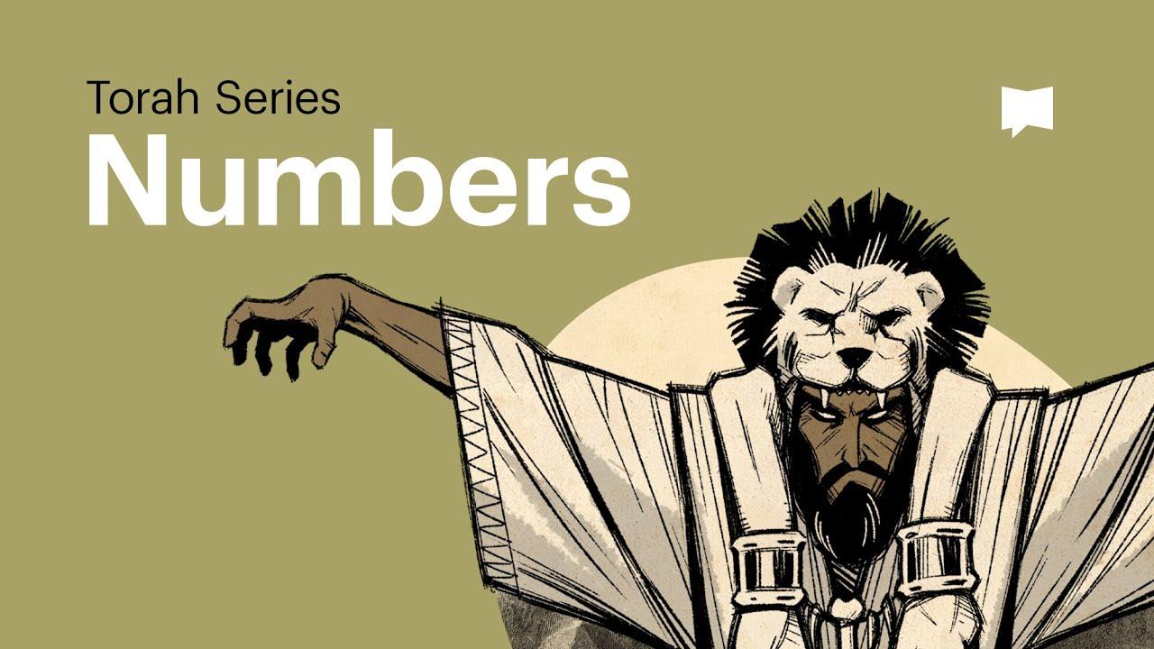 The Book of Numbers #1