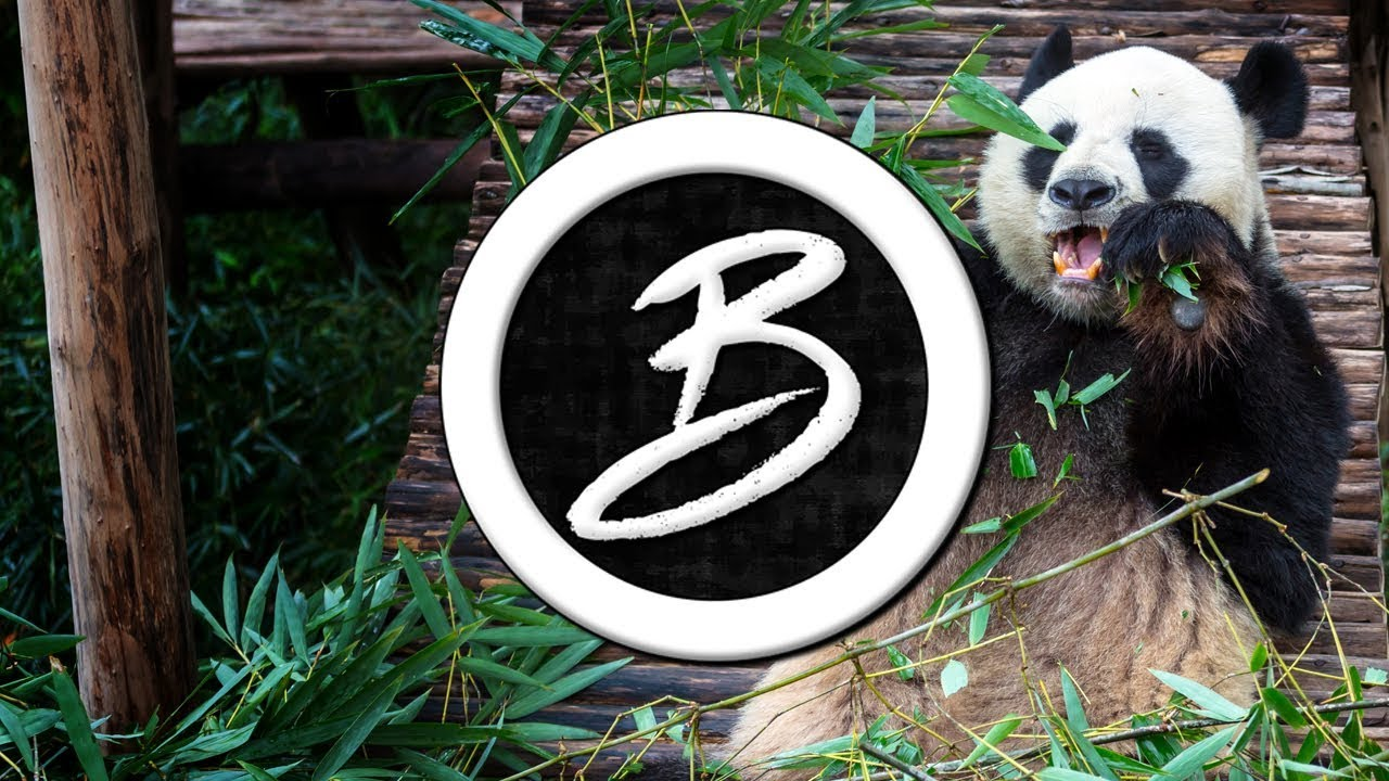 Free Panda Travis Scott Drake Type Beat Rap Trap Austin Reed Beats Youtube