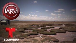 Diablo vive atrapado en laguna de Bolivia, según vecinos | Al Rojo Vivo | Telemundo thumbnail
