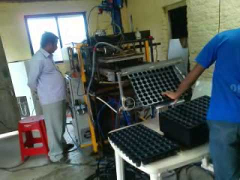 Seed Tray By Sunforming Machines, Nashik