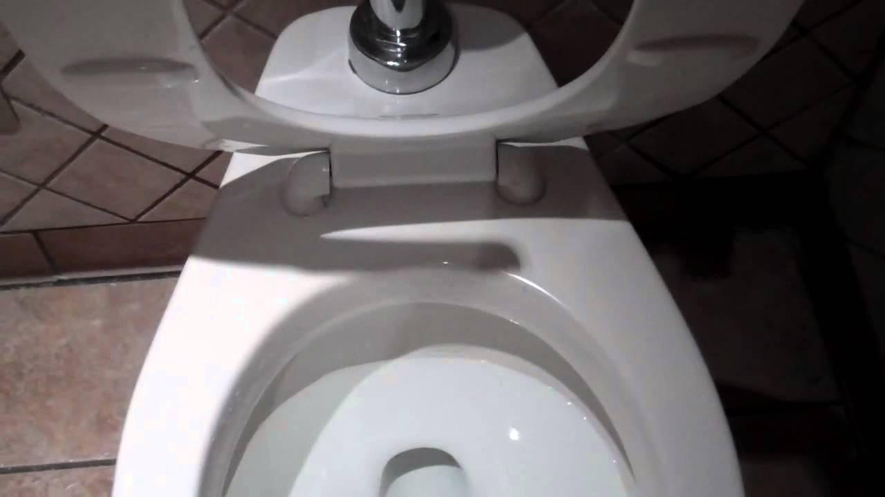 4110 1971 1983 American Standard Cadet Toilet On Flush