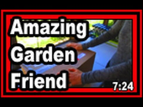 Amazing Garden Friend - Wisconsin Garden Video Blog 681
