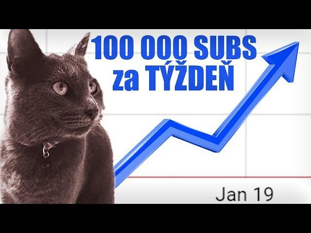 AKO SOM ZÍSKALA 100 000 ODBEROV ZA TÝŽDEŇ?
