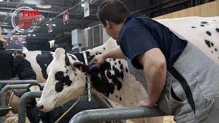 Concours Prim'Holstein du SIA 2014
