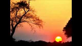 Download Ingrid Kup- Life Goes On.wmv Mp3 and Videos