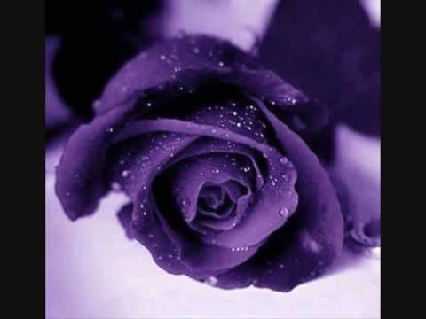 Tum Mile - Neeraj Shridhar New Song 2009 best hits by damu.wmv