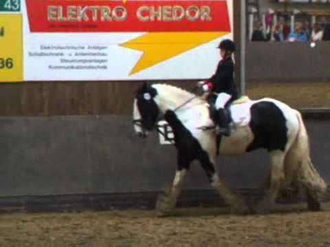 Reiterwettbewerb mit Tinker Sam und Mia 7Jahre alt