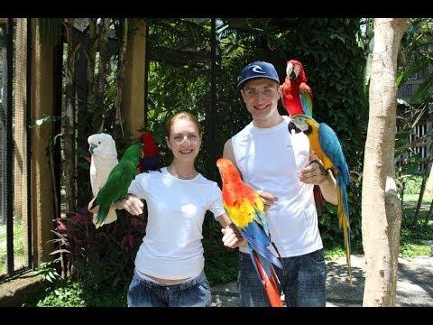Bali Bird Park. Indonesia. Парк Птиц на Бали.