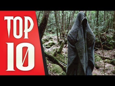 Top 10 Most Mysterious Forests In The World That Will Tickle Your Curiosity