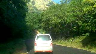 Charmadi Ghat Drive... ( Mangalore )