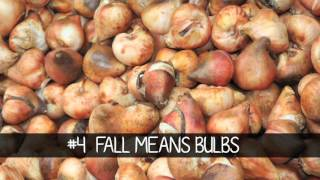 5 Simple Fall Gardening Tips & Tricks