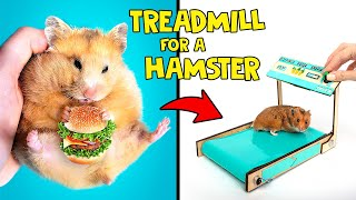 How To Build Treadmill for A Hamster 🐹
