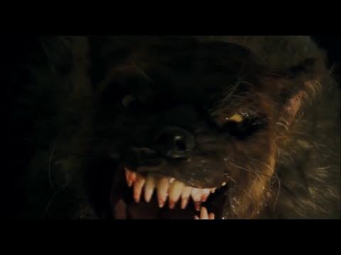 Female Werewolf TF 10