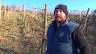 Wenn die Regenwürmer zurück kommen! Provinea im Weingut Burggarten