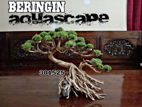 bonsai-aquascape-beringin-akar-senggani-302515