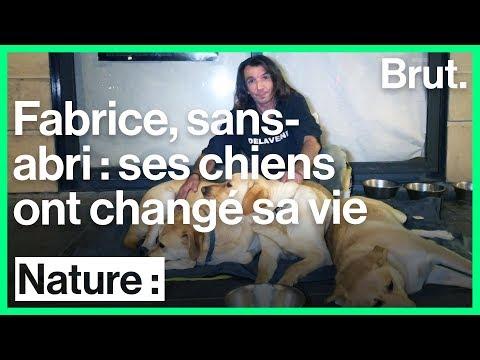 Interview avec Fabrice, sans domicile fixe, sur le rôle de ses chiens