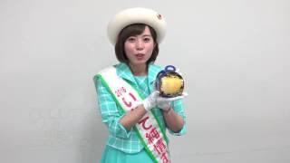 12月2日、2016いわて純情むすめの千葉絢加さんが河北新報社を訪れ、4日...
